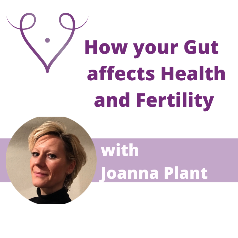 how your gut affects your Health and Fertility